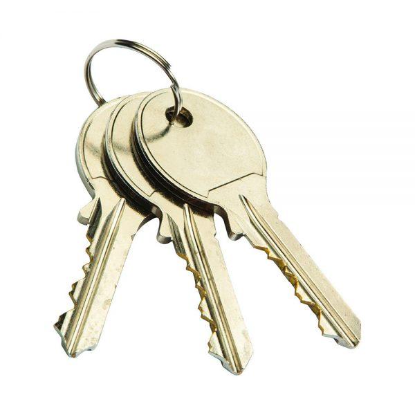 کلید سوئیچی بهریزان